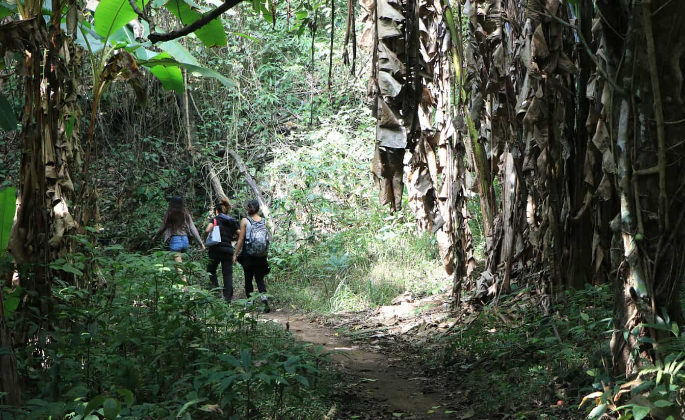 Chiang Mai Hike