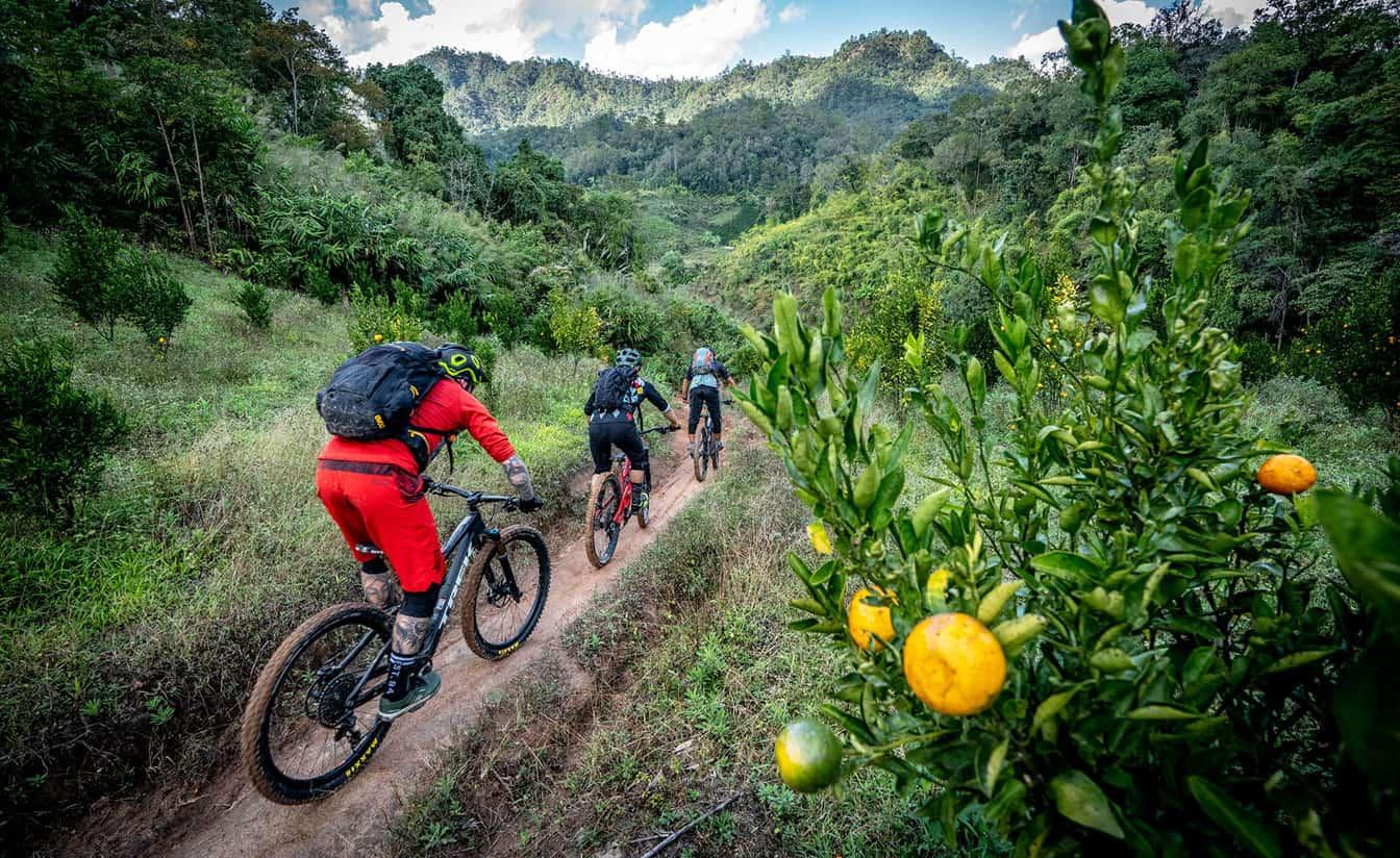 Cycling Tour Chiang Mai