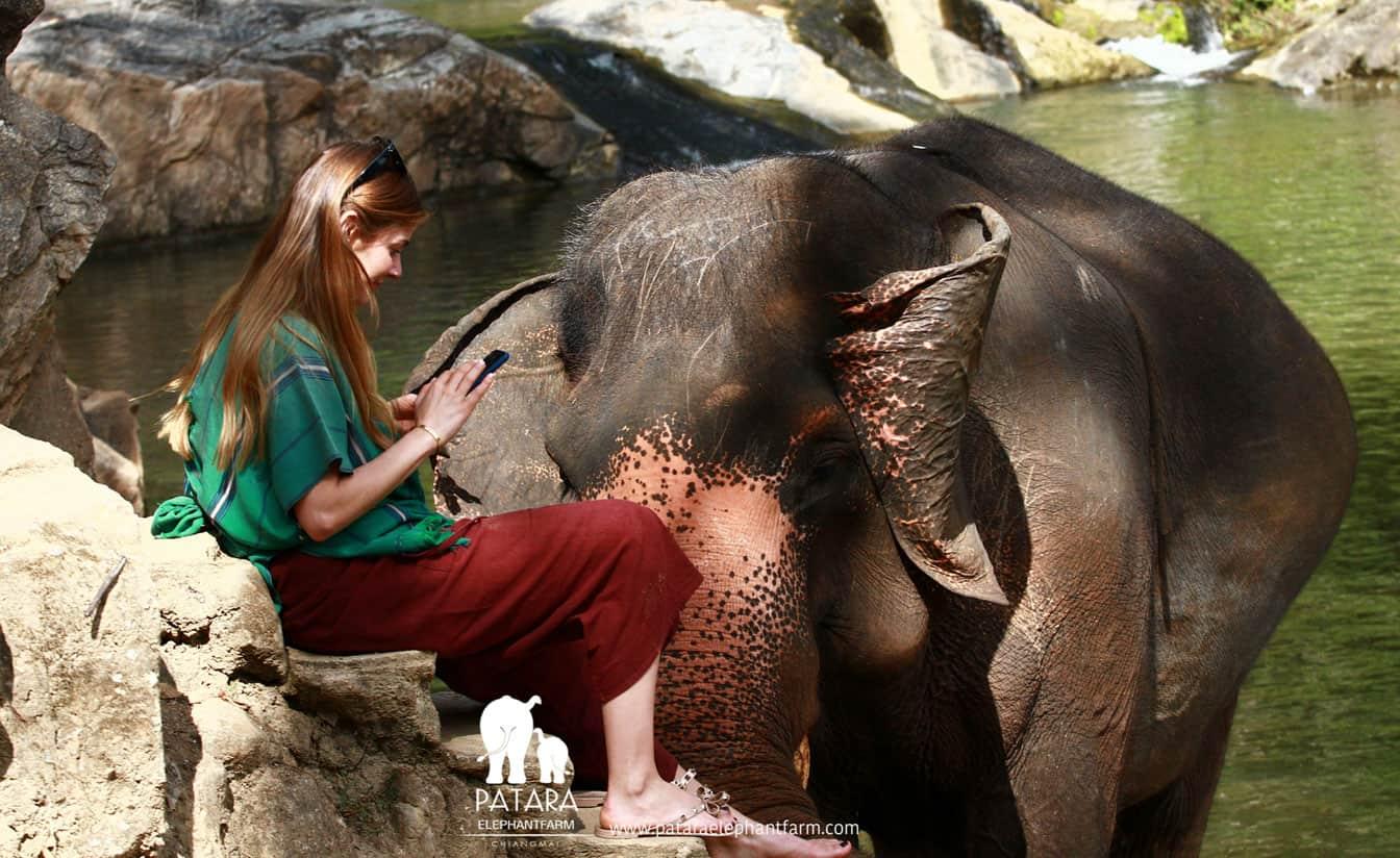 Elephant Day Care Patara