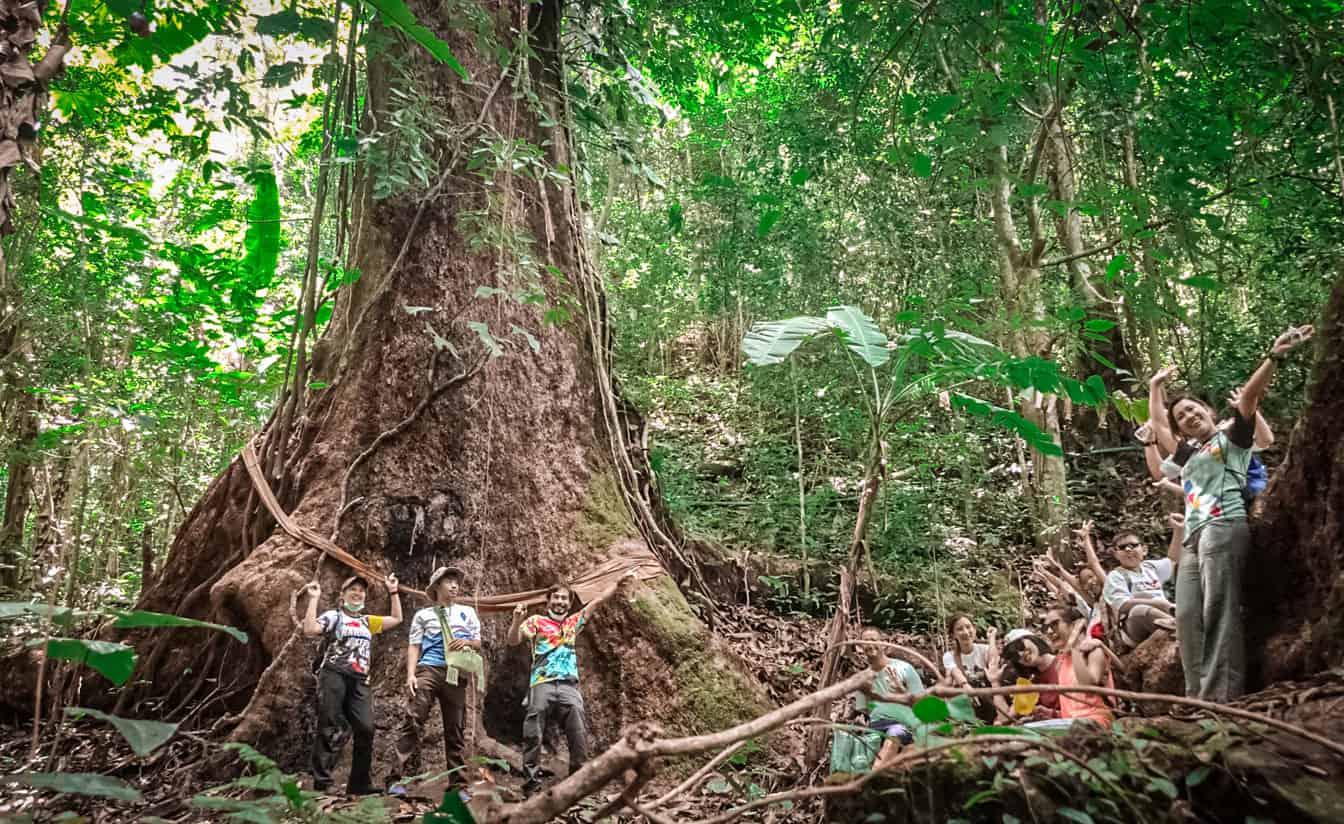 Mae Kampong Hike